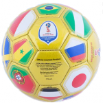 2018 FIFA World Cup Russia Team Ball